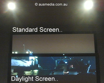 Daylight type screen